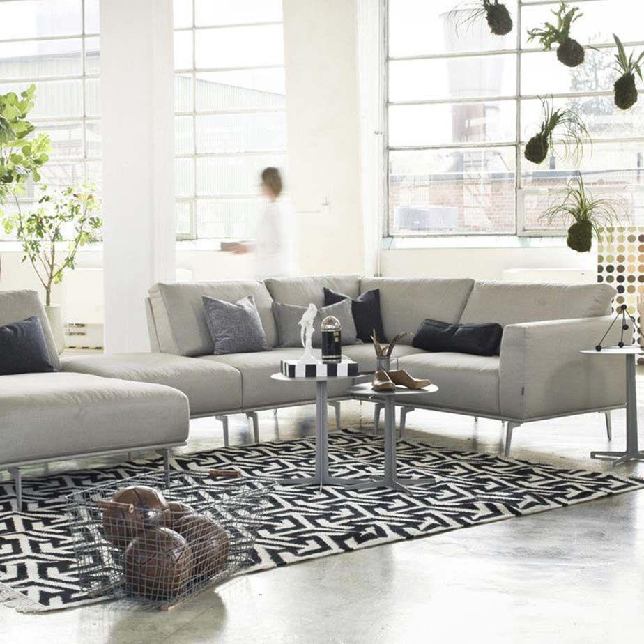 שטיח ARROWS