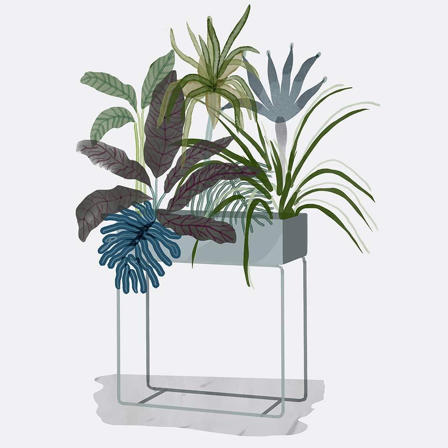 אדנית PLANT BOX