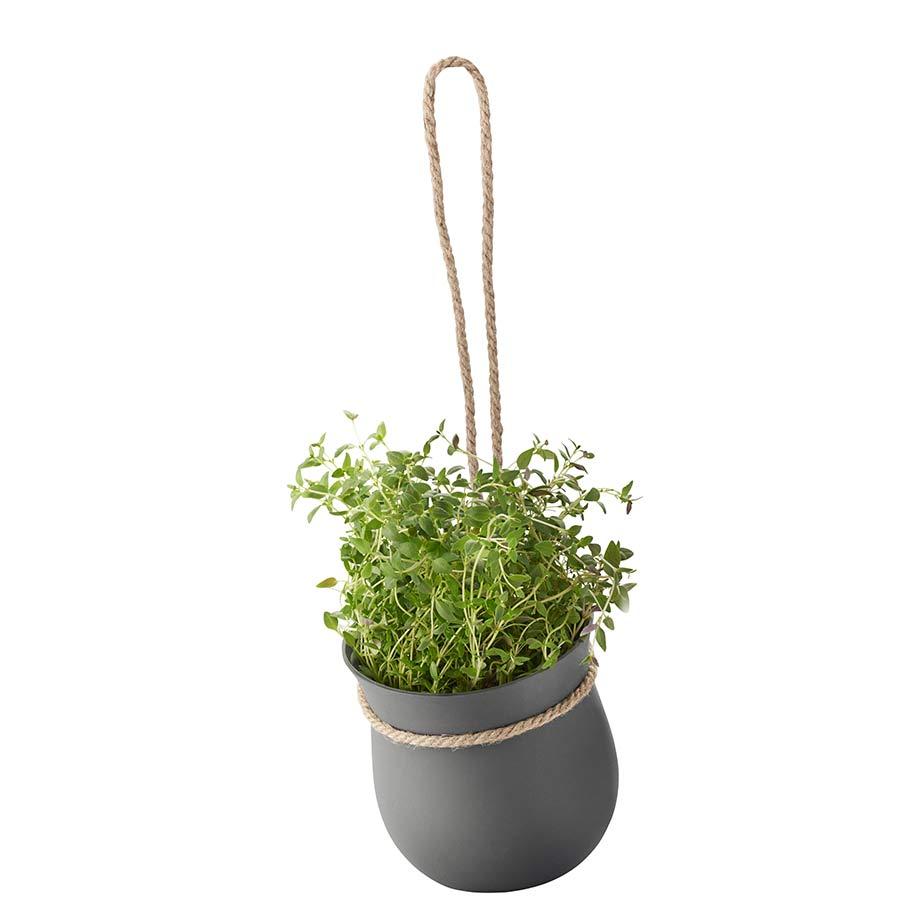 עציץ GROW-IT