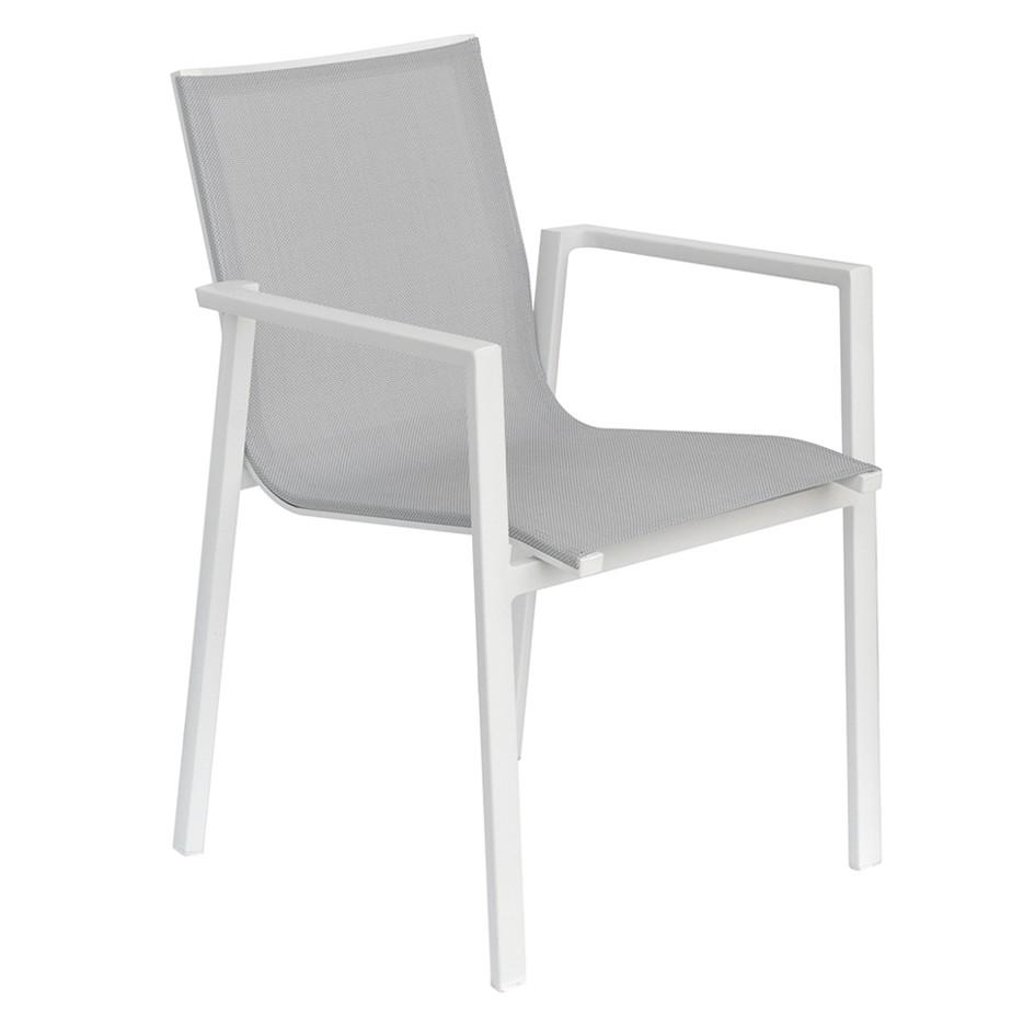 כסא CANIS