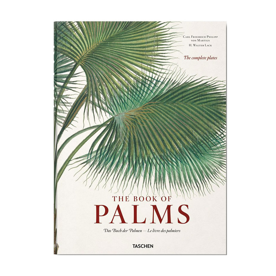 ספר The Book of Palms